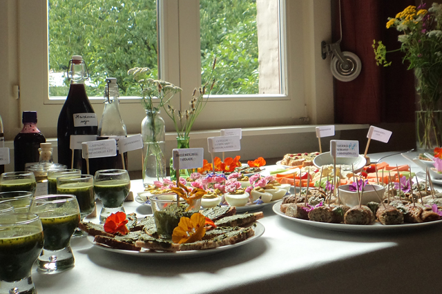 Culinair gebruik van wilde planten en bloemen.