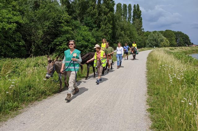 Ezelwandeling langs de rivier Nete Berlaar - Gestel